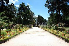O lunga alee plantata cu flori in Le Jardin des Plantes din Coutances perfecta pentru o scurta plimbare