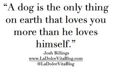 This Week's Quote | La Dolce Vita