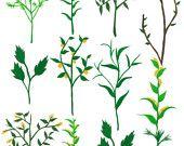 herb garden fabric