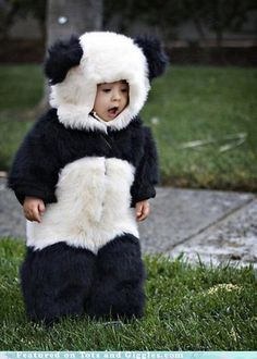 panda baby - someday, I will have a child, solely for the purpose of making them wear this :)