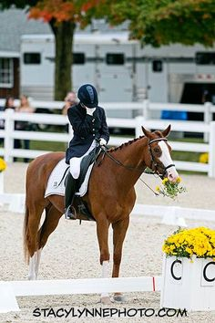 Forget smelling the flowers. Eat them instead! In front of the judges is best ;-) I could see my horse doing that!