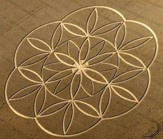 flower of life crop circle mandala Crop Circles, Aliens And Ufos, Ancient Aliens, Circle Art, Circle Design, Geometric Circle, Geometric Designs, Yi King, Seed Of Life