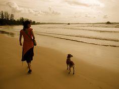 Weligama Bay, Sri Lanka (www.secretlanka.com)