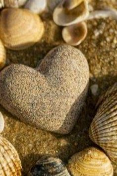 Picture of stone heart and shells on the beach stock photo, images and stock photography.