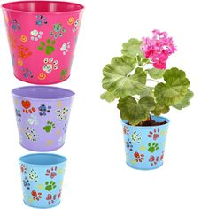 Pastel Paw Print Planters - Set of 3 Every #Purchase Funds #Alzheimer 's #Research.  https://alzheimers.greatergood.com/store/alz/category/364/garden