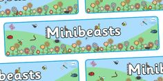 Twinkl Resources >> Minibeast Display Banner >> Thousands of printable primary teaching resources for EYFS, KS1, KS2 and beyond! banner, minibeasts, display, topic, foundation stage, knowledge and understanding of the world, investigation, living things, snail, bee, ladybird, butterfly, spider, caterpillar,