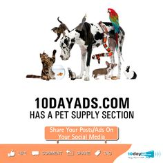 10dayads.com has a pet supply section. #BuySellAds #FreeAdWebsites