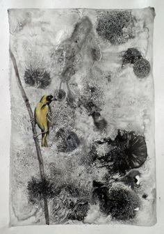 Buy Weaver Bird Paintings For Sale Online Paintings For Sale, Bird Paintings, Mixed Media Painting, Figurative Art, Online Art Gallery, Contemporary Artists, Paper Art, My Arts, African