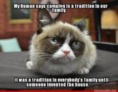 The last time I checked, we have one. Grumpy Cat Quotes #GrumpyCat #Meme #Humor