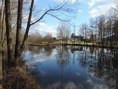 © @LeDomaineDuLac à Rocroi #Ardennes #France