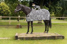 Afbeeldingsresultaat voor dekens voor een paard