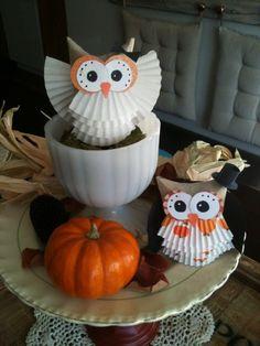 herbst basteln eulen dekorationen muffinförmchen klorollen