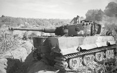 PzKpfw VI Tiger with zimmerit of the schwere Panzer-Abteilung 508. Villa Bonnaza Italy
