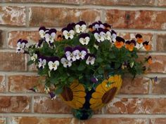 November gardening tips from Texas A&M University AgriLife Extension Service.