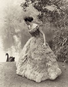 ATHOL SHMITH Fashion photograph. Model Ann Chapman (who later became a favorite of Norman Parkinson) A very famous photo of a lavish feathered dress with a black swan that just happened to appear for the shot, in Melbourne's beautiful huge Royal Botanical Gardens. 1961. From Athol Shmith Photographer by Isobel Crombie (minkshmink)