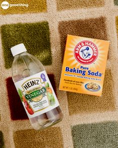Best 25 Pet Stain Removers Ideas On Pinterest Cleaning