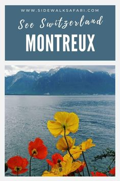 Discover a one day Montreux itinerary. Learning about fun things to do in Montreux Switzerland. Travel Switzerland with a weekend visit to Montreux. #Montreux #Switzerland Weekend Trips, Long Weekend, Weekend City Breaks, European City Breaks, Travel Around Europe, Lake Geneva, Lausanne, Switzerland, Safari