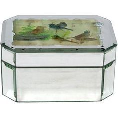 Bring warmly weathered romance to your dresser, credenza, or vanity table with the Sparrow Box, showcasing a beautifully mirrored surface and vintage-inspired botanical motif.   Product: Box   Construction Material: Glass  Color: Multi    Dimensions: 3 H x 5.25 W x 6.75 D