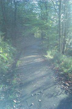 Hidden walkway