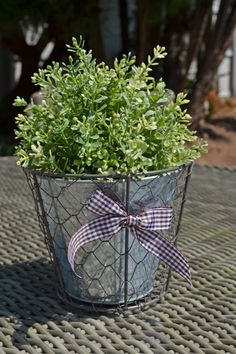 Wire Basket Planter Gingham Bow Basket Planters, Online Gift Shop, Wire Baskets, Garden Plants, Gingham, Shabby Chic, Gardens, Bow, Flowers