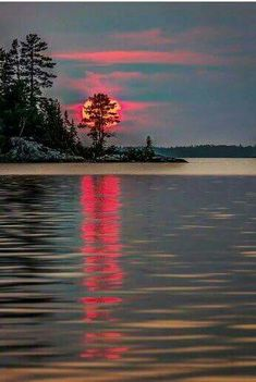 Glowing red sunset over the water through the trees reflecting on the lake. Serene, calming, beauty!