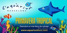 L'Aquàrium de Barcelona inaugura la primavera tropical