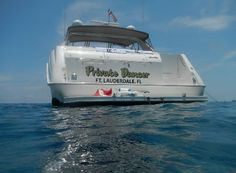 Discover paradise aboard your very own Sea Ray Sundancer yacht.....Private Dancer Yacht Charters Fort Lauderdale Beach, Water Sports, Cruise, Dancer, Tropical, Waves, Boat, Conception, Fun