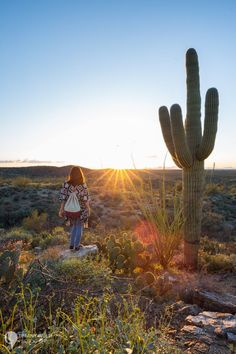 Watching the sun set in Saguaro National Park in Winter