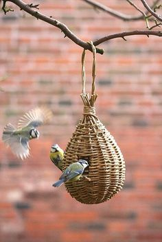 'Teardrop Feeder' willow craft project - As featured in book: Willow Craft 10 Bird Feeder Projects