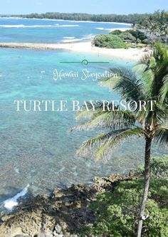 Our experience at Turtle Bay Resort as a staycation. Hint: lots of relaxation and delicious drinks! @turtlebayseis #sponsored