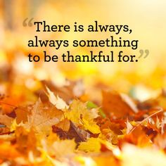 """There is always, always something to be thankful for.""-Unknown.Find more cute, funny and inspirational Thanksgiving quotes here."