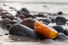 Amber stone on rocky beach. Precious gem, treasure. Baltic Sea