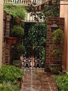 entrance to a courtyard garden off Chartres St., New Orleans