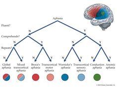 aphasia decision tree