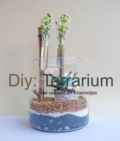 """Diy: Terrarium met vetplant en bloemetjes - Plant & bloem - Altijd leuk om planten en bloemen in huis te hebben. Die brengen sfeer en gezelligheid in elk interieur. Voor mijn salontafel, heb ik een vaas met vetplant en bloemetjes gemaakt. Is een soort """"terrarium"""" met verschillende soorten decoratief zand en steentjes. Om het net iets meer gezellig te maken, heb ik 2 glazen pipetjes op stokjes gehangen, en daar kan ik kleine bloemetjes in doen, bv. uit onze tuin. Ik vind dat het..."""