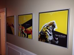3 polygon animals graphic design printed and install on aluminium glass frame...Graphic design + printing
