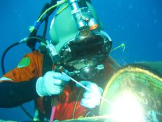 marine underwater - Google Search
