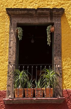 Colorful San Miguel de Allende, Mexico (great place to look @ doors and balconies!!)