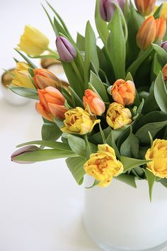 Beautiful Tulips...
