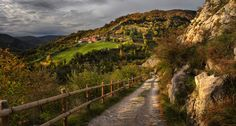 Path by Amador Funes