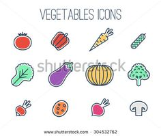 Vector collection of vegetables icons: tomato, pepper, carrot, salad, eggplant, pumpkin, radish, potato, red beet, cucumber, broccoli, mushroom . Thin line icons. - stock vector