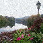 The free Bridge of Flowers, located in downtown Shelburne Falls, Mass., is a former trolley bridge that offers 400 feet of more than 500 varieties of flowers, shrubs and vines, as well as scenic views of picturesque Shelburne Falls. http://visitingnewengland.com/blog-cheap-travel/?p=253