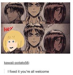 Again... I like Armin more than all three of those characters, especially Mikasa. I really hate her for some reason. She kinda reminds me of Rize from Tokyo Ghoul. Levi is close behind Armin though.