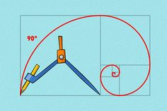 How to Draw the Golden Spiral. Commonly found in nature, the well-known shape of the golden spiral is a unique form but can be sketched nicely using the elements of the Fibonacci sequence. It is fairly simple to draw, and can be quite. Fibonacci Golden Ratio, Fibonacci Spiral, Fibonacci Sequence Art, Geometry Art, Sacred Geometry, Geometry Tattoo, Math Art, Grafik Design, Teaching Art