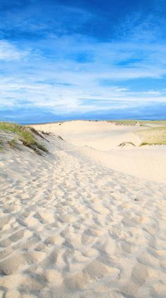 ( :-) Places To Travel, Places To See, Beach Bodys, Beach Vibes, I Love The Beach, The Dunes, Beach Pictures, Beach Club, Cape Cod
