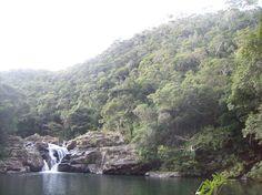 Tanaga View