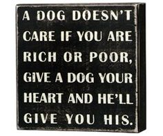 A dog doesn't care if you are rich or poor, give a dog your heart and he'll give you his.