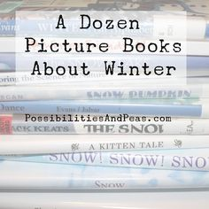 Picture Books About Winter For Kids