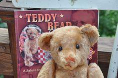 1907 apricot mohair antique Ideal teddy bear