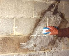 Waterproofing Basement Walls - Extreme How To - View All
